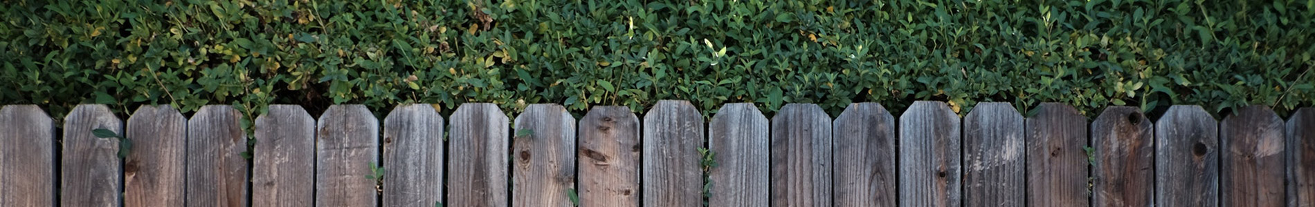 wooden fencing services essex